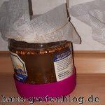 Brottrank3-150x150 in Brottrank aus Kolbenhirse selber machen