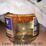 HirseimGlas-150x150 in Kolbenhirse ernten und verarbeiten
