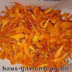 Ringelblumenbl Ten-150x150 in Ringelblumencreme in der heimischen Küche selbst herstellen
