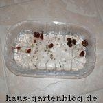 Schnecken-150x150 in Wochenrückblick im Gartenblog KW 20/17
